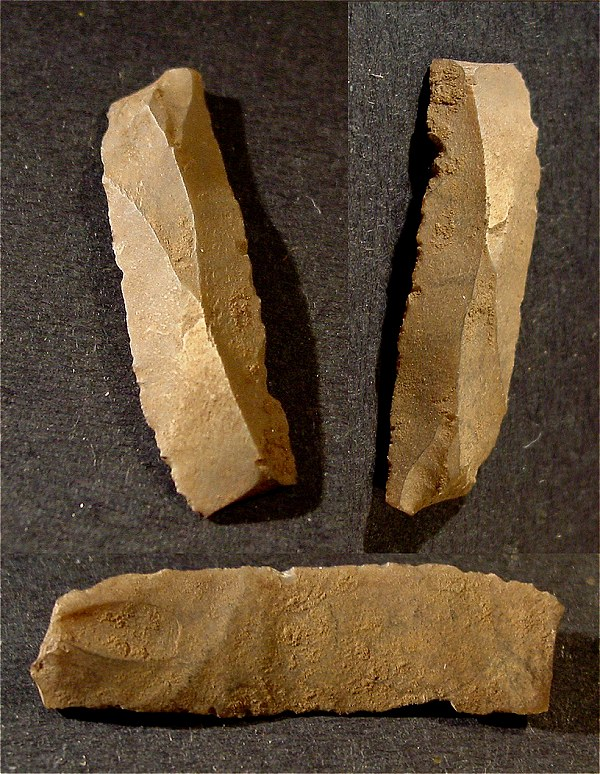 comparing paleolithic societies Paleolithic times was when people moved around to find food the people went were the food went in neolithic times people stayed in one spot and farmed an domesticated animals, instead of hunting.